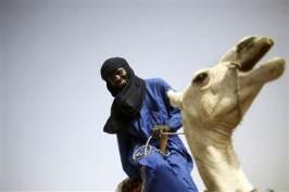 pb-120818-camel